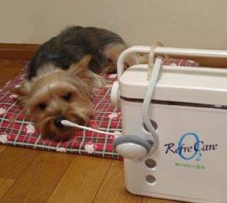 ペットの酸素